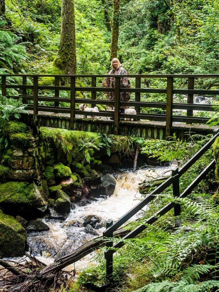 Carolyn on Bridge -Stanley Ghyll Waterfall by David P Stewart Photography 1
